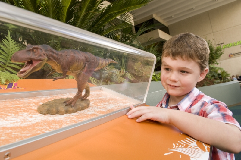 Boy looking at model of Tyrannosaurs rex